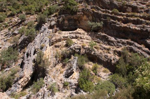 IMG 5662  Pliegue del Borosa-Los Caracolillos